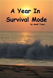 A Year In Survival Mode cover image