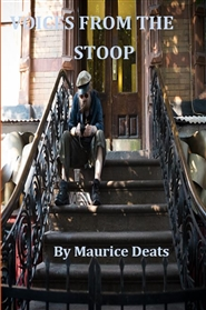 Voices From The Stoop cover image