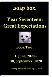 .soap box. Year Seventeen Book Two - Great Expectations cover image