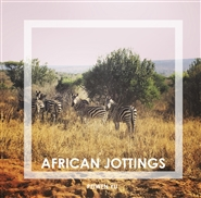 African jottings cover image