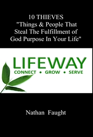 "10 THIEVES ""Things & People That Steal The Fulfillment of God Purpose In Your Life"" cover image"