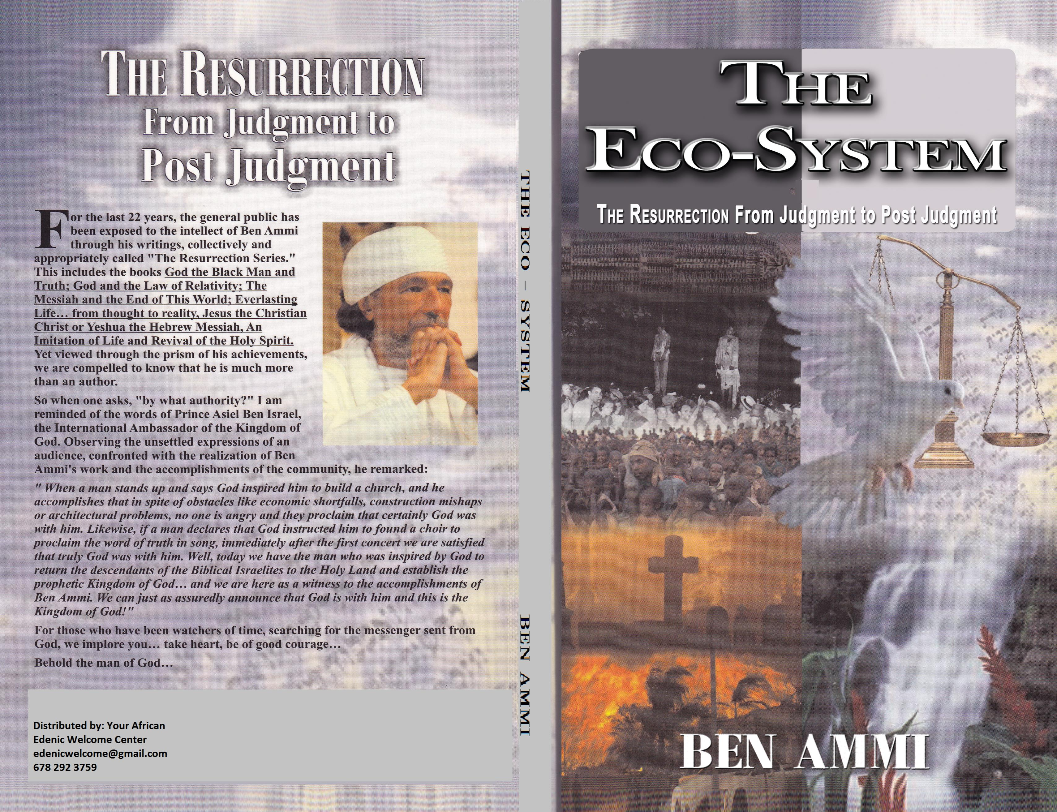 The Eco-System cover image