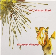 A Christmas Book cover image