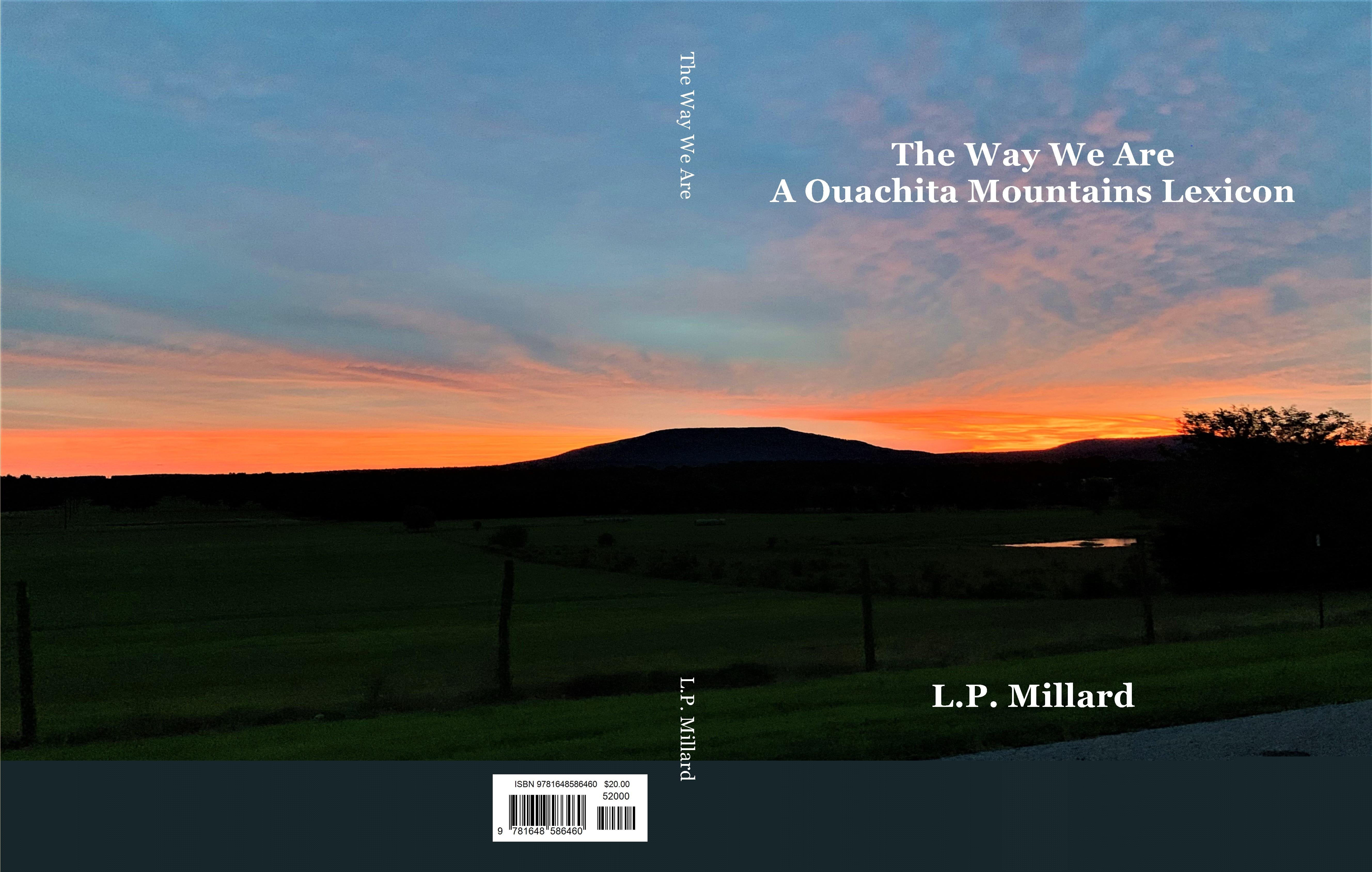 The Way We Are cover image