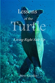 Lessons of the Turtle cover image