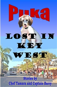 Puka Lost in Key West cover image