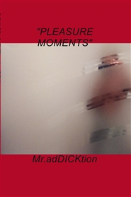 PLEASURE MOMENTS by MR. adDICKtion cover image