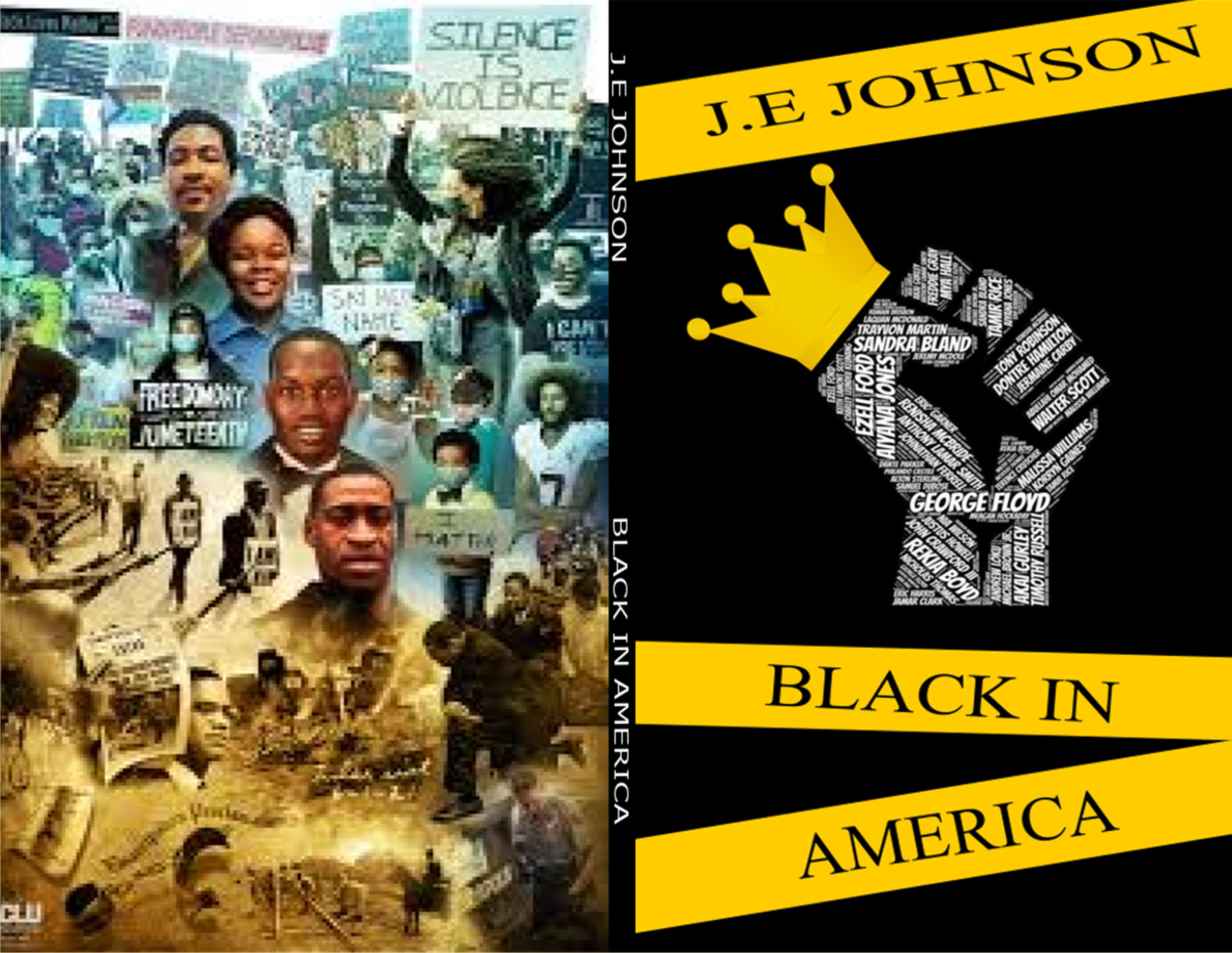 Black in America cover image