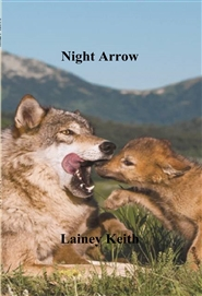 Night Arrow cover image