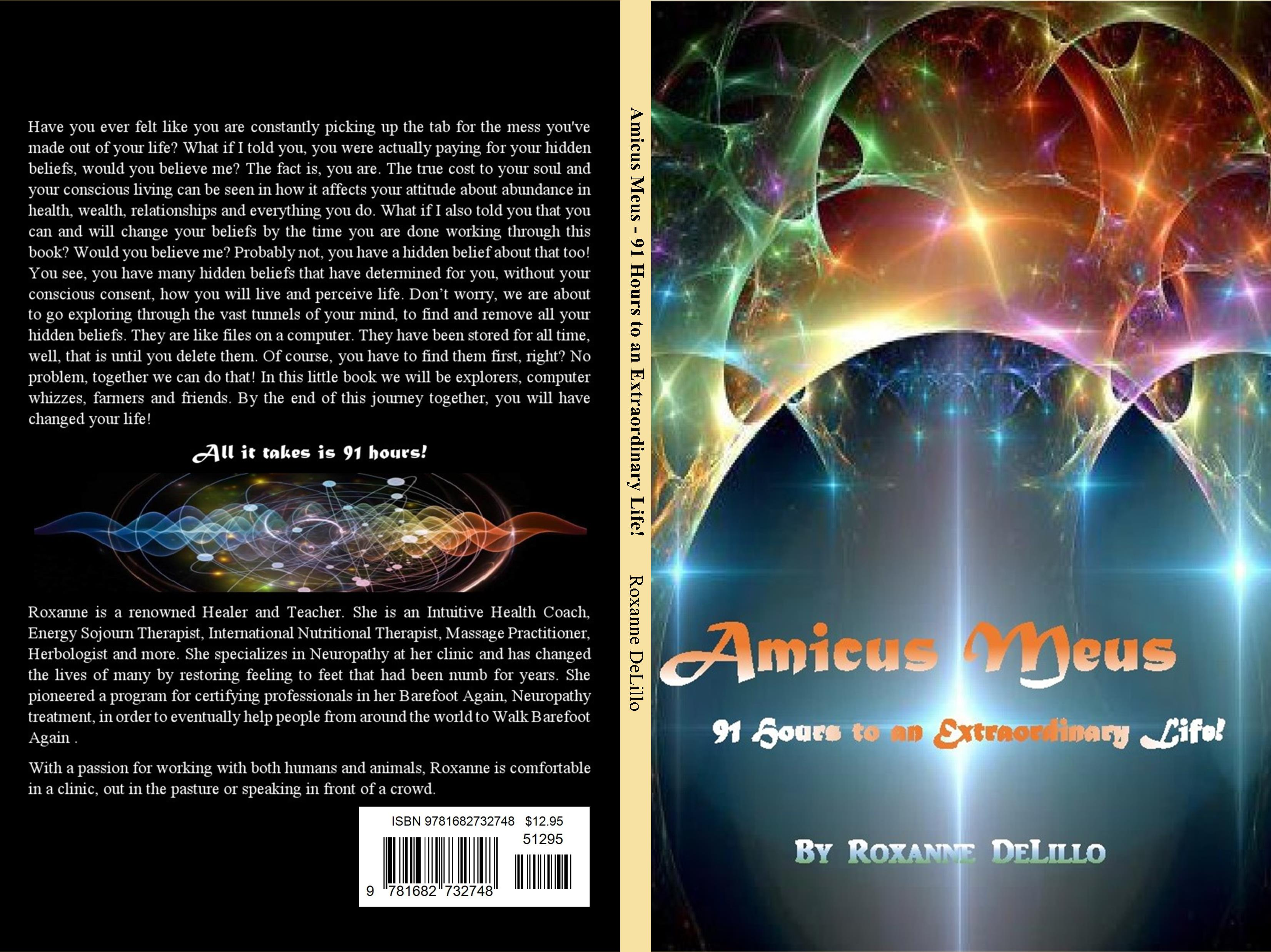 Amicus Meus - 91 Hours to an Extraordinary Life! cover image