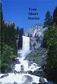True Short Stories cover image