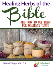 Herbs of the Bible cover image