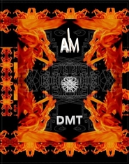 I AM DMT by RHAIME TERDCE cover image