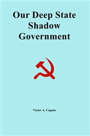 Our Shadow Government cover image