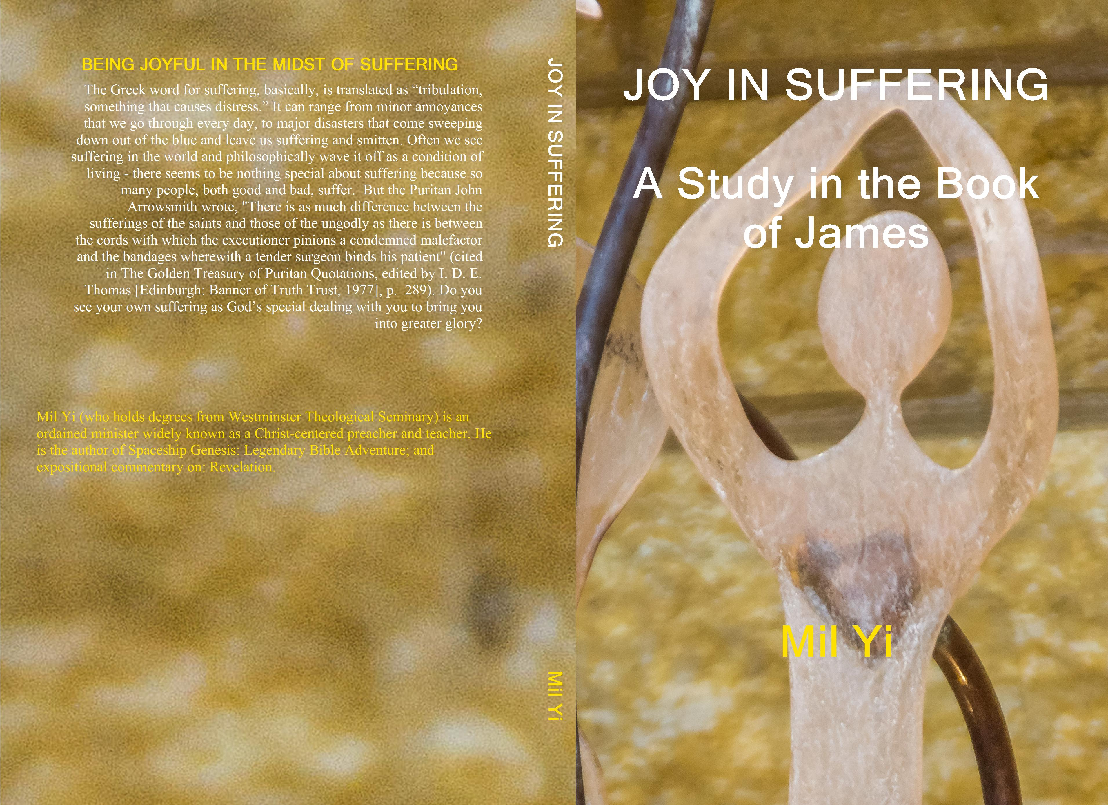 JOY IN SUFFERING A Study in the Book of James cover image