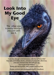 Look Into My Good Eye cover image