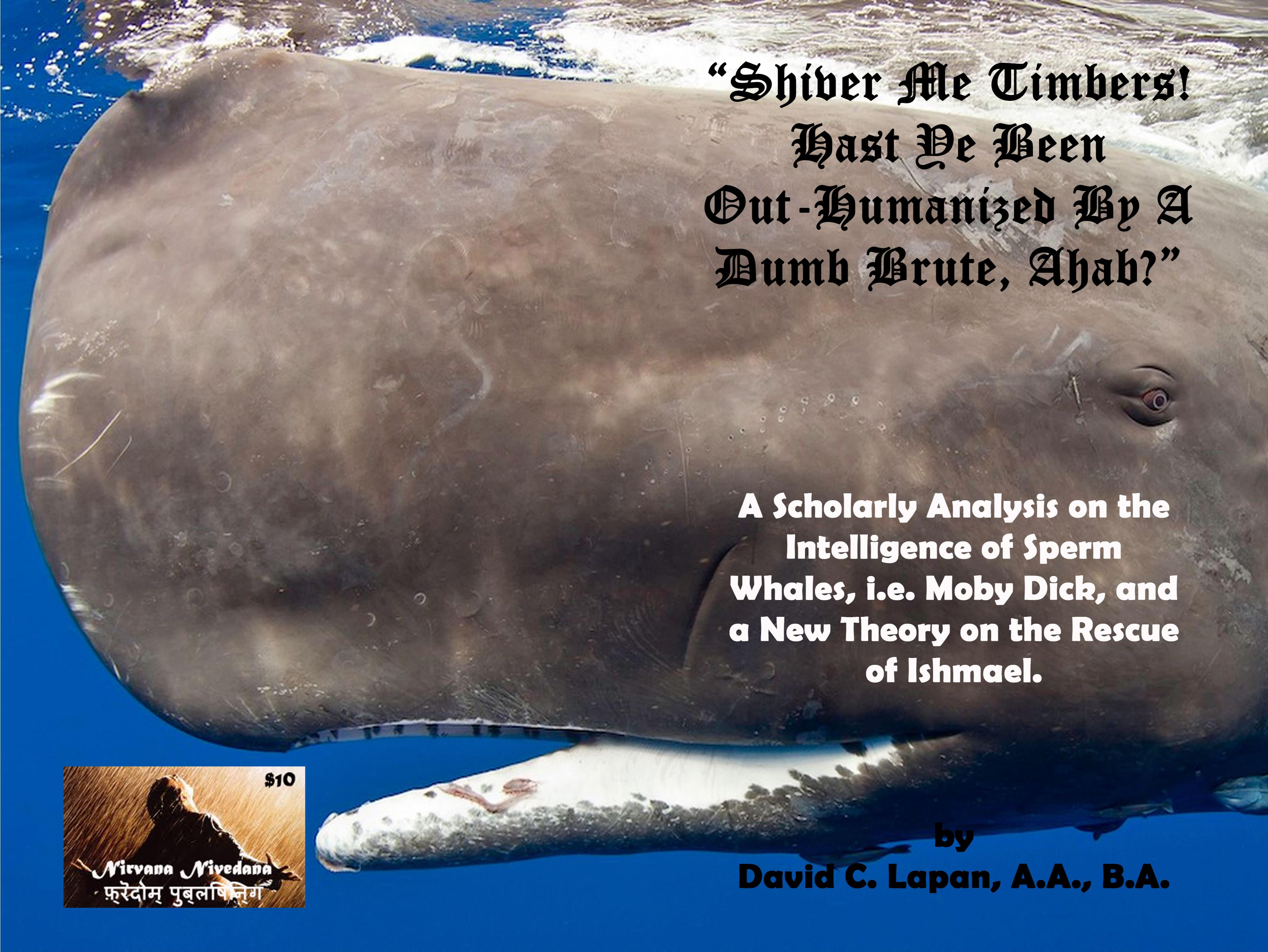 Shiver Me Timbers! Hast Ye Been Out-Humanized By A Dumb Brute, Ahab? cover image