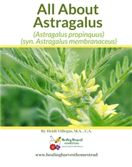 All About Astragalus cover image