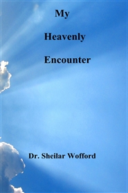 My Heavenly Encounter cover image