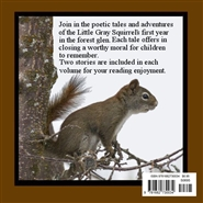 Little Gray Squirrel - Book Four cover image