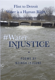 WaterINJUSTICE cover image
