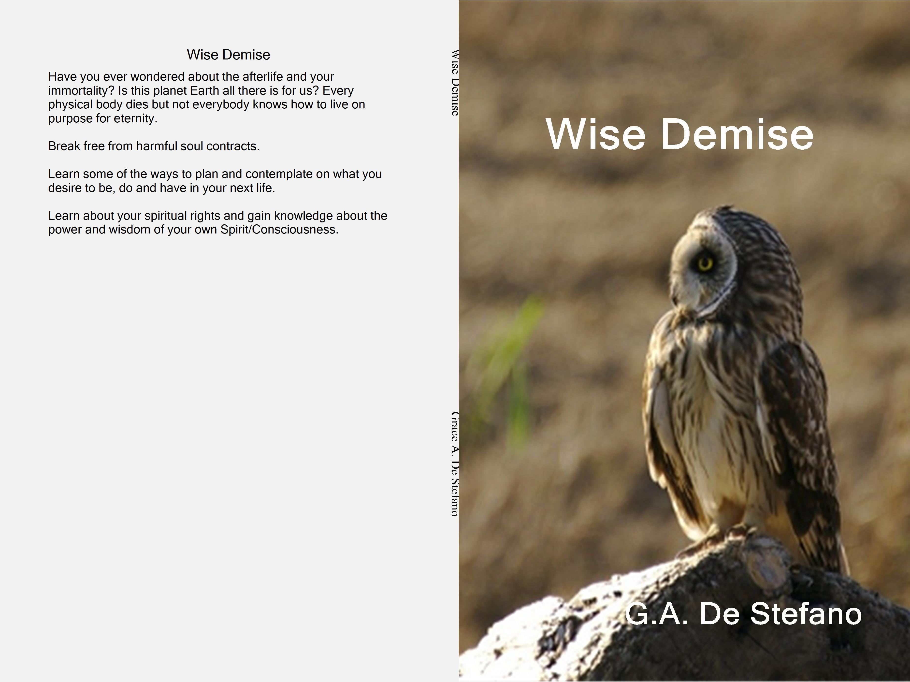 Wise Demise cover image