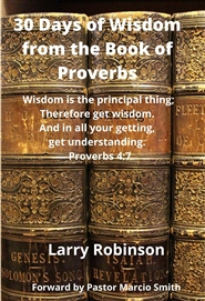 30 Days of Wisdom in the Book of Proverbs cover image