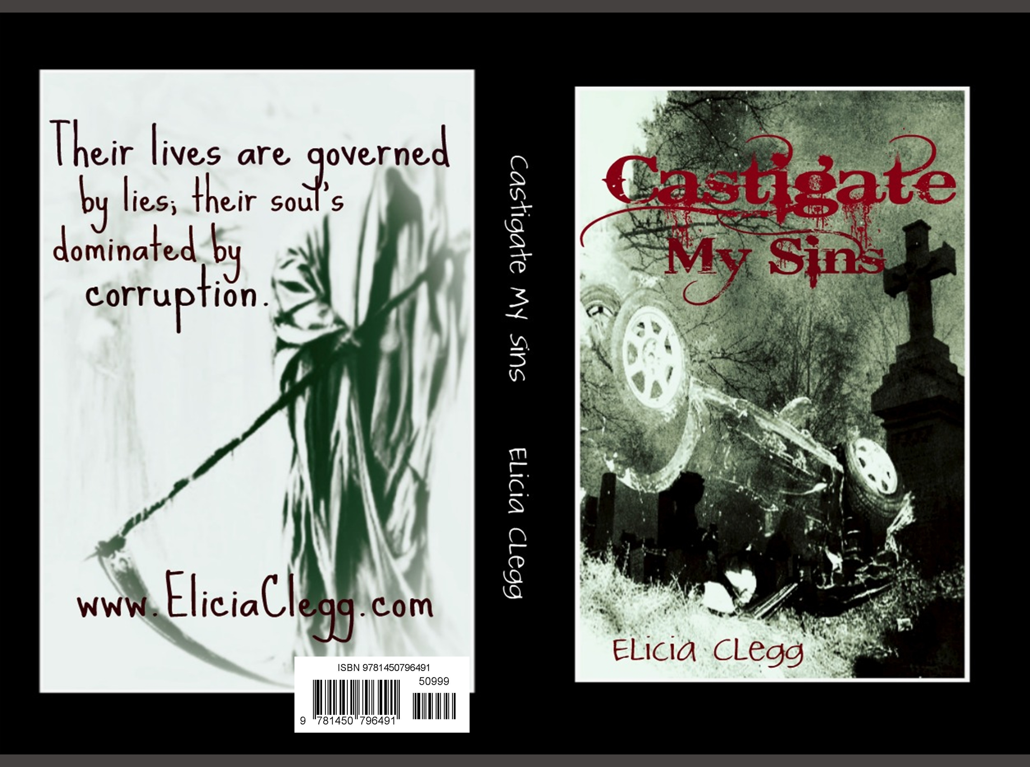 Castigate My Sins cover image
