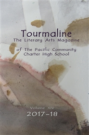 Tourmaline, Volume XIV cover image