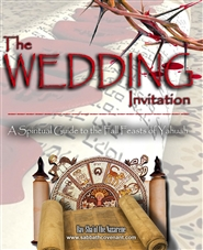 The Wedding Invitation cover image