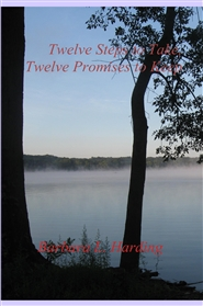 Twelve Steps to Take, Twelve Promises to Keep cover image