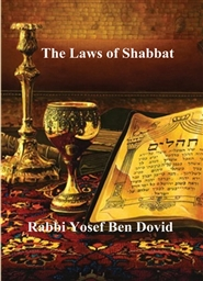 The Laws of Shabbat cover image