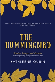 The Hummingbird cover image