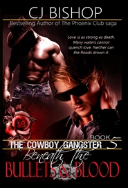 The Cowboy Gangster - Bk 5 cover image