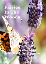 Fairies In The Woods cover image