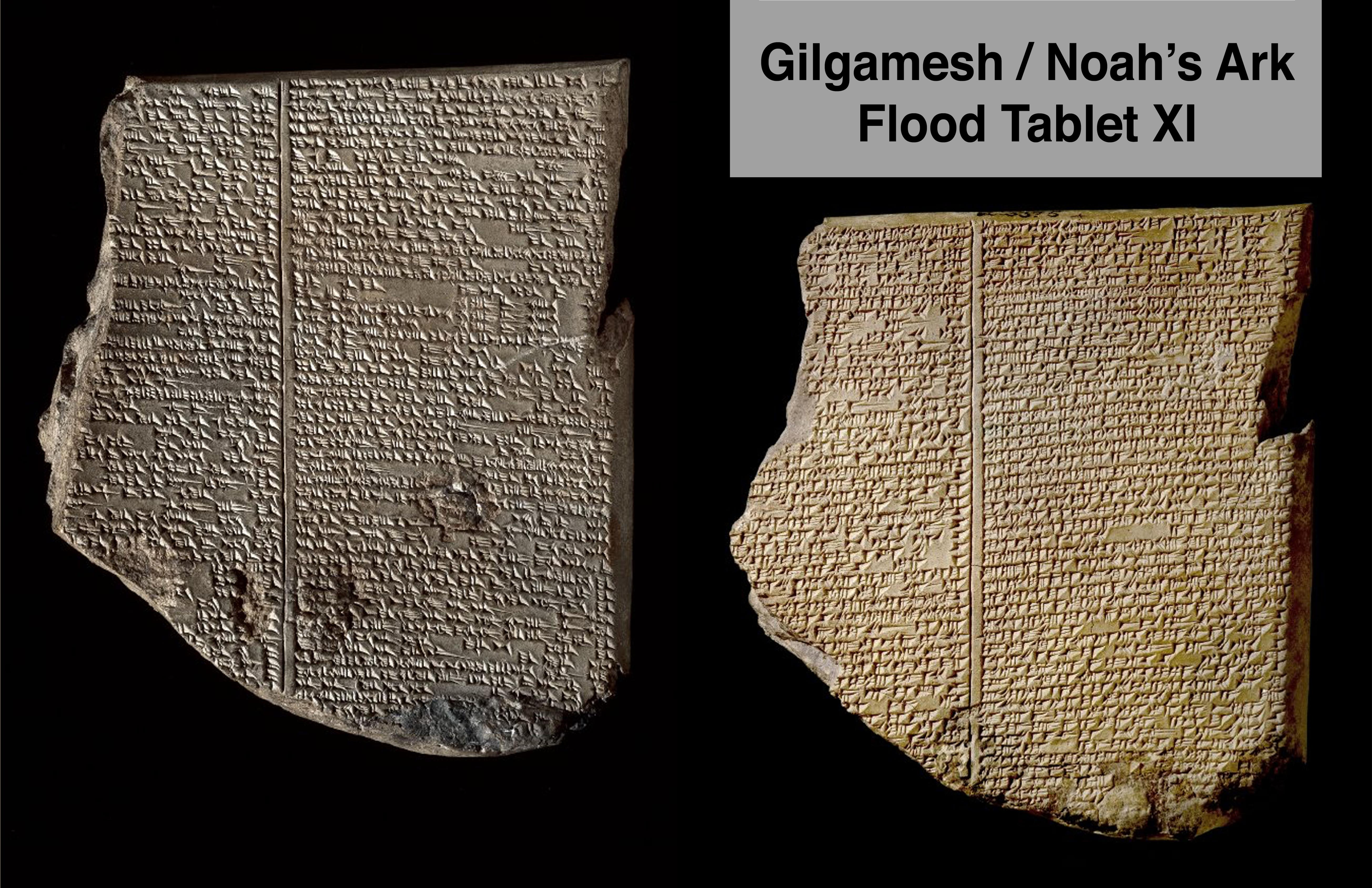 a comparative analysis of the great floods experienced by gilgamesh and noah A jungian analysis of the epic of gilgamesh this paper will provide a unique, psychological perspective on a timeless story that is.