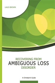 Recovering from Ambiguous Loss Disorder: A Christian Guide cover image