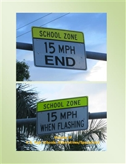Public Schools in Dade County: K-8, High Schools, Alternatives/Specialized cover image