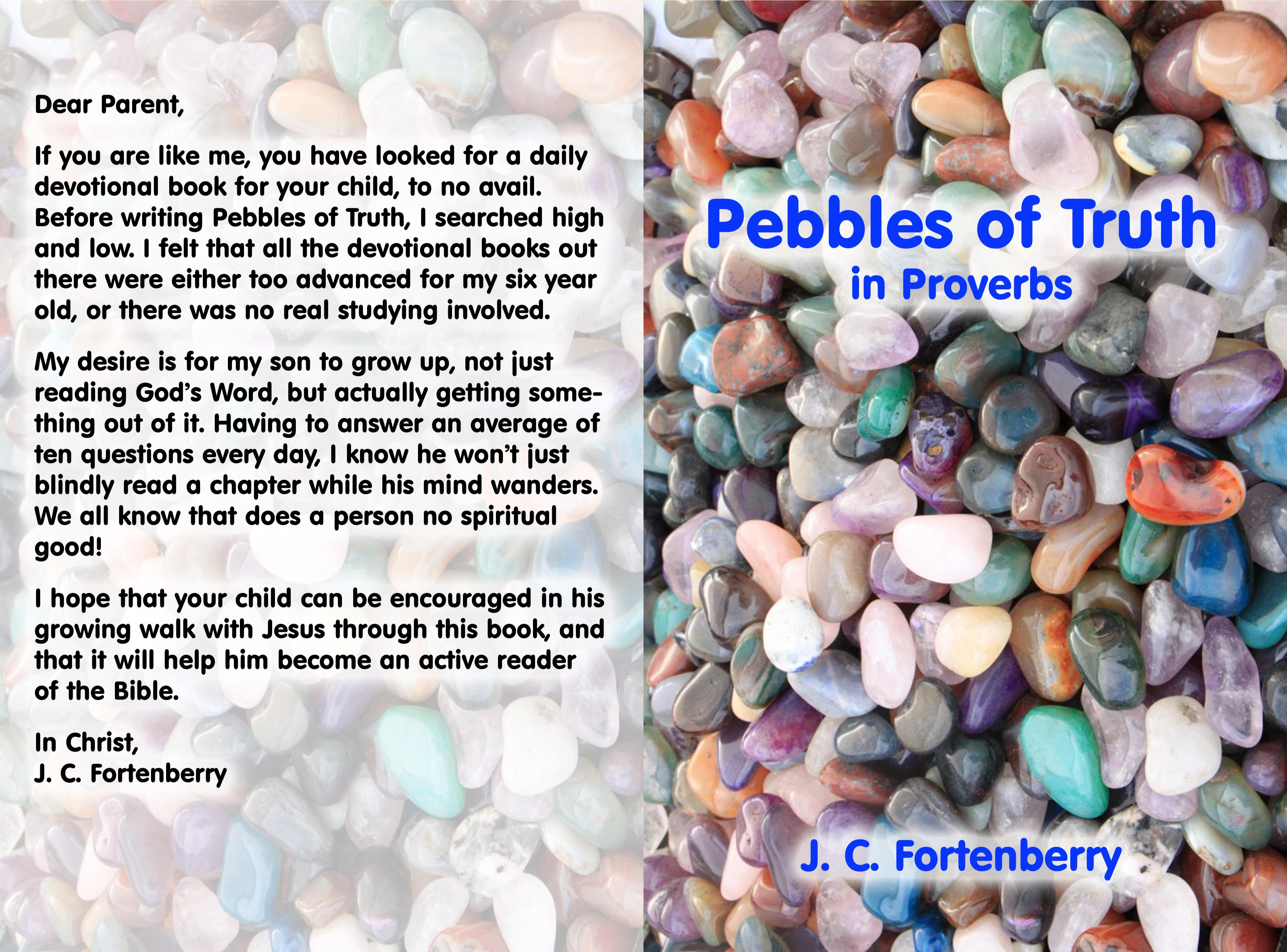 Pebbles of Truth in Proverbs cover image