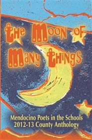 The Moon of Many Things cover image