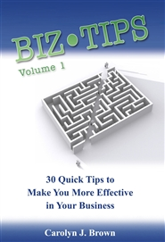 Biz Tips Vol 1 cover image