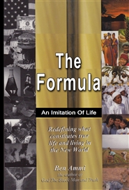 The Formula cover image