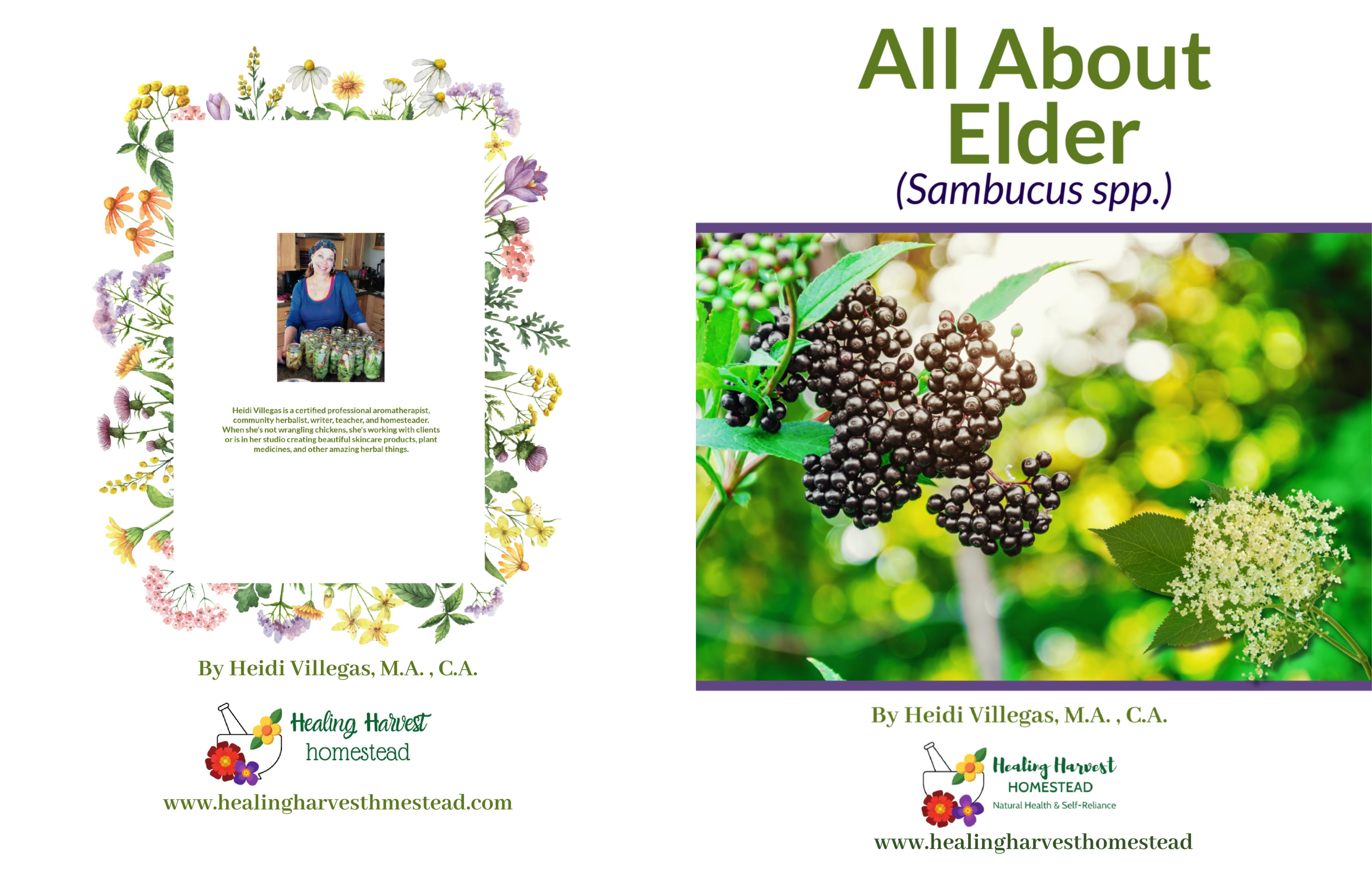 All About Elder cover image