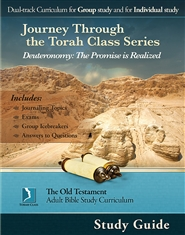 Deuteronomy: The Promise is Realized, Study Guide cover image