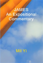 JAMES An Expositional Commentary cover image
