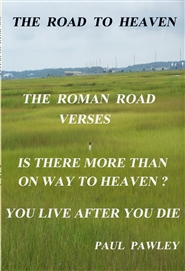 THE ROAD TO HEAVEN cover image