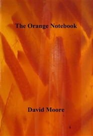 The Orange Notebook cover image
