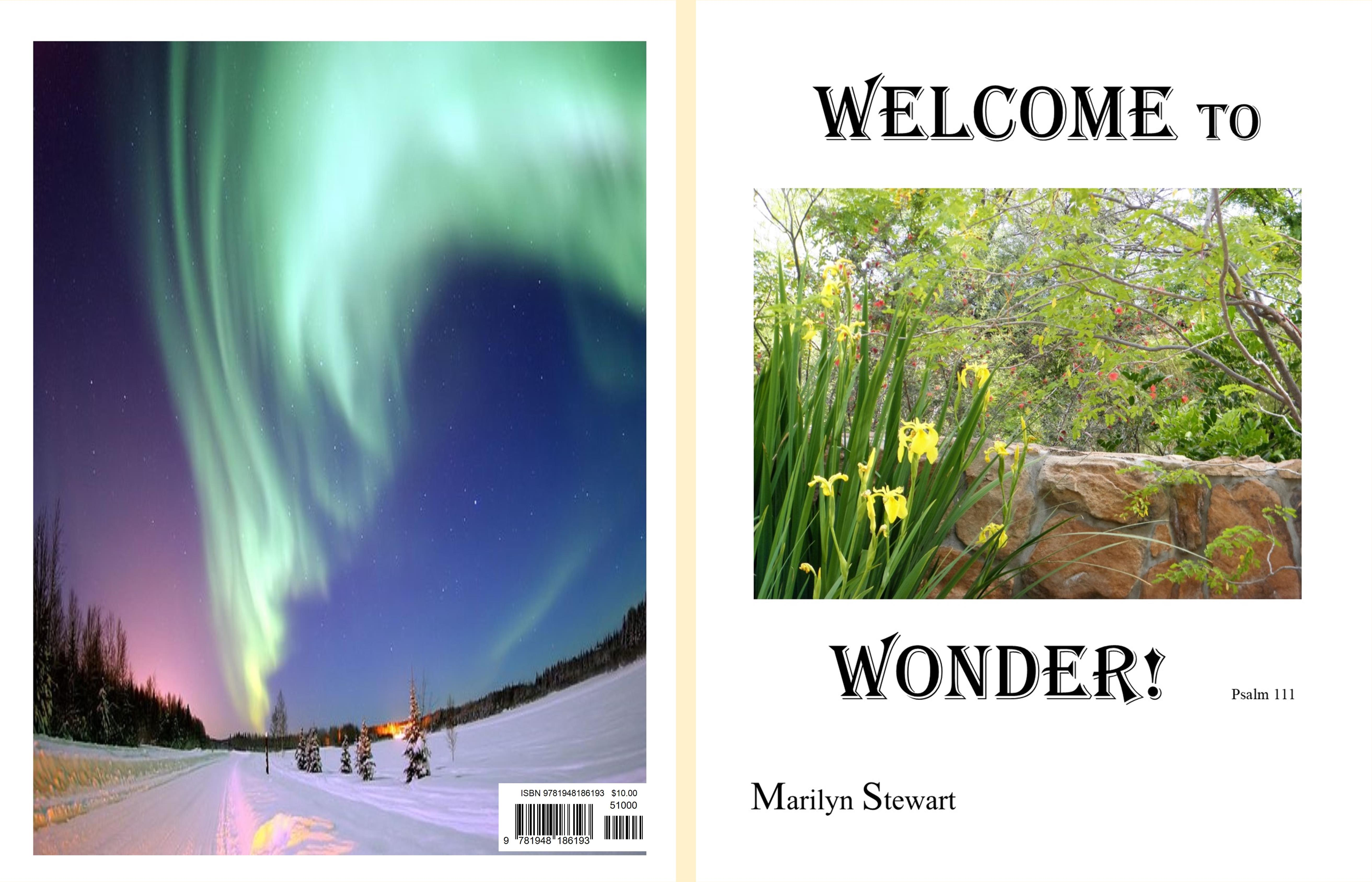 Welcome to Wonder cover image