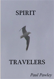 SPIRIT TRAVELERS cover image