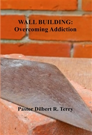 WALL BUILDING: Overcoming Addiction cover image
